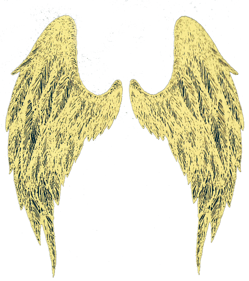 Avenging Angel wings